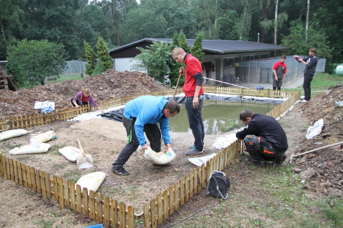 Azubis der toom Baumärkte in der Region Sachsen unterstützen Zwickauer Tierheim. Foto: Alice Jagals