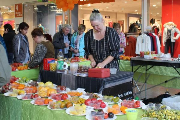 Besucher des Neefeparks Chemnitz können Tomatenzüchterin Birgit Kempe am 2. Oktober ins Gespräch verwickeln. Vier Tische voller Tomaten verschiedenster Sorten stehen zur Diskussion. Foto: d5