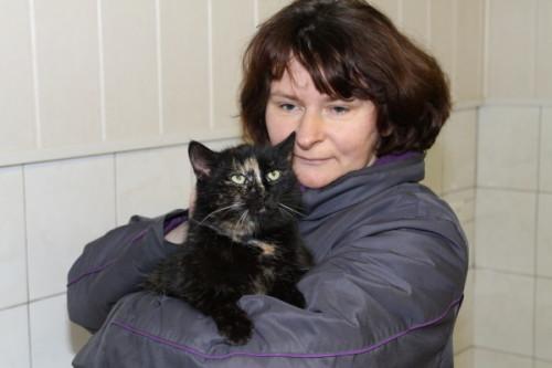 Die Katze Chichi sehnt sich nach einem liebevollen Zuhause. Foto: Uwe Wolf