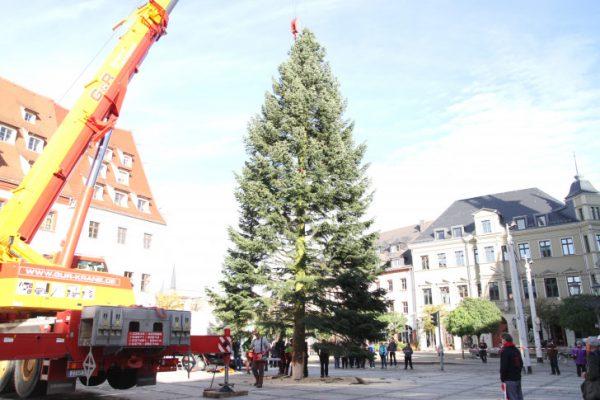 weihnachtsbaum-aufstellung-img_4414-20