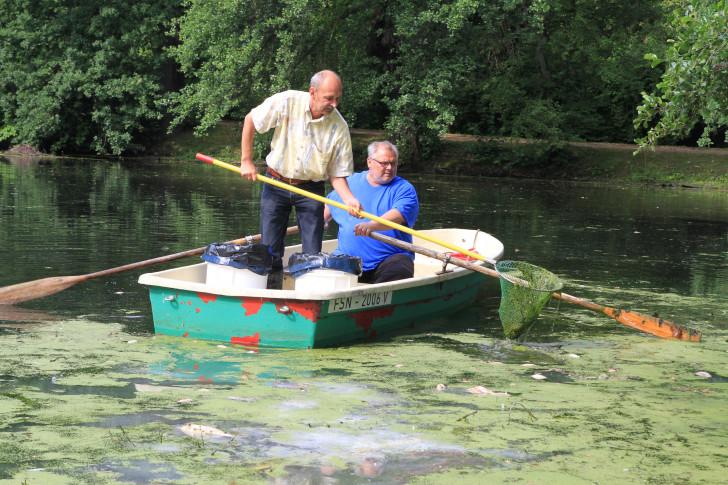 Das stinkt gewaltig wochenendspiegel for Fische in teich